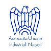Associazione Unione Industriale di Napoli